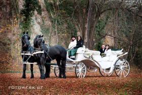 Foto 2 Exclusive Hochzeitskutschen - Kremserfahrten - Kutschfahrten
