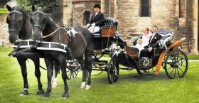 Foto 3 Exclusive Hochzeitskutschen - Kremserfahrten - Kutschfahrten