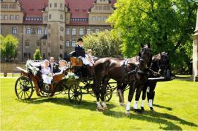 Foto 5 Exclusive Hochzeitskutschen - Kremserfahrten - Kutschfahrten