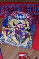 FC Bayern München Kissen von 1996