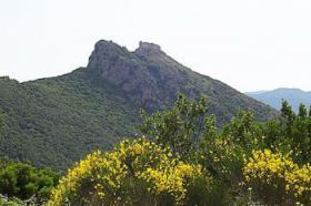 Foto 3 Fährverbindungen Elba