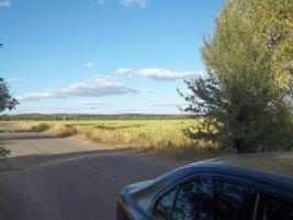 Foto 2 Farmland in der Ukraine, Kornkammer Europas