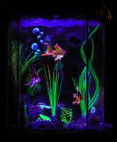 Foto 2 Feng-Shui Schwarzlicht Diarama SCURRILARIUM
