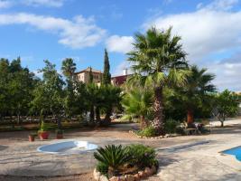 Foto 17 Ferien in der Finca Casa-Nana im Süden Mallorcas