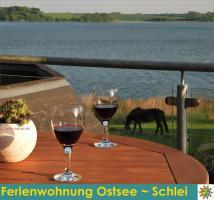 Ferien Urlaub Schlei Ostsee Unterkunft FeWo  ruhige Ferienwohnung Ferienhaus  - privat und ruhig mit Wasserblick und Balkon   - auch mit Hund - Last Minute  in Schleswig - Holstein