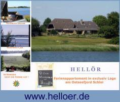Foto 3 Ferien Urlaub Schlei Ostsee Unterkunft FeWo  ruhige Ferienwohnung Ferienhaus  - privat und ruhig mit Wasserblick und Balkon   - auch mit Hund - Last Minute  in Schleswig - Holstein