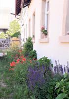 Naturnaher Garten