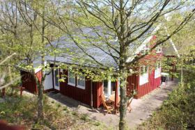 Ferienhaus Anke Extertal