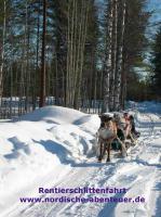 Foto 4 Ferienhaus Brännmyra mit Kamin, Sauna und Hund in Lappland/Schweden für grosse Familien