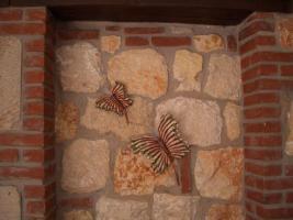 Foto 5 Ferienhaus in Chalkidiki Griechenland Steinhaus Menia