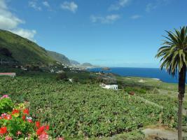 Foto 13 Ferienhaus Don Quijote auf der Kanaren Insel Teneriffa