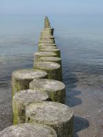 Foto 17 Ferienhaus Ostsee sehr strandnah Ahrenshoop Fischland Darss Zingst