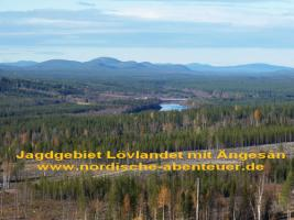 Foto 4 Ferienhaus, Blockhütte mit Kamin und Sauna in Lappland/Schweden