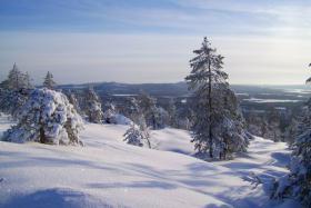 Foto 7 Ferienhaus, Blockhütte mit Kamin und Sauna in Lappland/Schweden