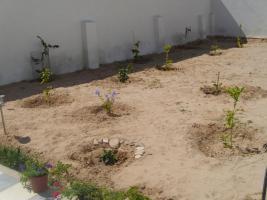 Foto 9 Ferienhaus, Djerba, Houmt Souk, Tunesien