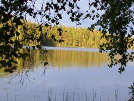 Foto 3 Ferienhaus, Ferienwohnung, Bungalow m. Boot, Sauna und Angelrecht in Süd- Schweden frei.