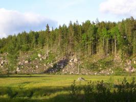 Foto 6 Ferienhaus, Ferienwohnung, Bungalow m. Boot, Sauna und Angelrecht in Süd- Schweden frei.