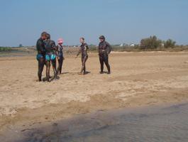 Foto 16 Ferienwohnung in Kroatien Sandstrand