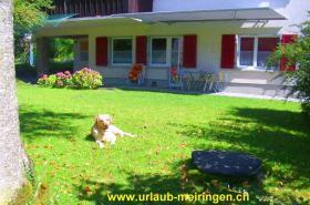 Foto 10 Ferienwohnung in Meiringen (Hasliberg), FeWo, Berner Oberland, auch Haustiere (Hunde, Katzen) willkommen, WLAN
