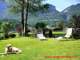 Foto 12 Ferienwohnung in Meiringen (Hasliberg), FeWo, Berner Oberland, auch Haustiere (Hunde, Katzen) willkommen, WLAN