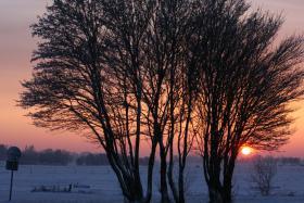 Foto 6 Ferienwohnung in Ostfriesland