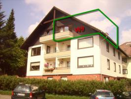 Ferienwohnung Panoramabilck in Braunlage