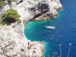 Ferienwohnung direkt am Meer mit Meeresblick
