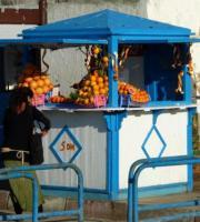 Foto 19 Ferienwohnung mieten in Essaouira (Marokko)