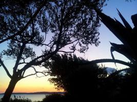 Ferienwohnungen für 4 und 7 Personen direkt am Meer in Rtina Miletici bei Zadar in Dalmatien, Hunde erlaubt
