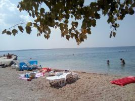 Foto 14 Ferienwohnungen für 4 und 7 Personen direkt am Meer in Rtina Miletici bei Zadar in Dalmatien, Hunde erlaubt