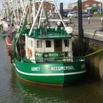 Foto 3 Ferienwohnungen an der Nordsee mit neuer Facebookseite