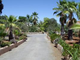 Foto 3 Finca 4600 m² Grundstück mit 2 Häuser und 2 Apartments & Schwimmbad in Malaga / Spanien
