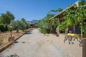 Foto 14 Finca 4600 m² Grundstück mit 2 Häuser und 2 Apartments & Schwimmbad in Malaga / Spanien