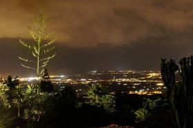 Foto 11 Fincaferien auf Teneriffa
