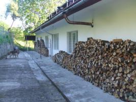 Foto 5 Firmen geeignetes Zweifamilienhaus zu vermieten, in Siebenbürgen, Rumänien.