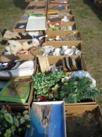 Foto 4 Flohmarkt-Artikel in Bananenkisten