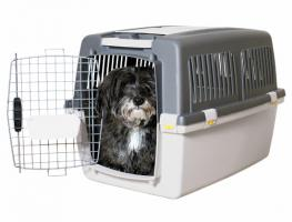 Flug-/Transportbox für Hunde, unbenutzt!