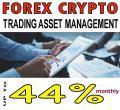Forex Crypto Trading Asset Management bis 44% Profit monatlich