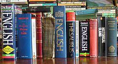 Für den kleinen Geldbeutel:   kostenlose Leseprobe / Demo-Beispiele Technisches Englisch Wörterbuch Ingenieure/ Maschinenbau / kfz-Mechatronik / Elektronik / Informationstechnik (Übersetzungen-Fachbegriffe Industriemechaniker)