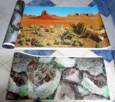 Foto 11 Futter für Landschildkröten & Futterpflanzen und Saatgut