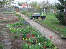Garten in erfurt gispersleben zu verkaufen gartenhaus pacht for Kleingarten erfurt