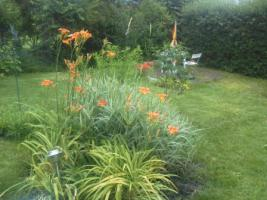 Foto 8 Gartenbungalow auf Pachtgrundstück