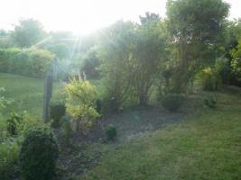 Foto 10 Gartenbungalow auf Pachtgrundstück