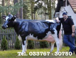 Foto 4 Geh mal in den Kuhstall … und seh Dir ne Holstein Kuh an ...