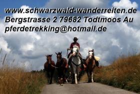 Foto 4 Geschenkidee für Reiter, Wanderreiter, Freizeitreiter - Wanderitt ab Todtmoos Au