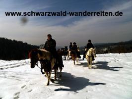 Foto 9 Geschenkidee für Reiter, Wanderreiter, Freizeitreiter - Wanderitt ab Todtmoos Au