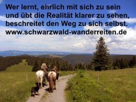 Foto 11 Geschenkidee für Reiter, Wanderreiter, Freizeitreiter - Wanderitt ab Todtmoos Au