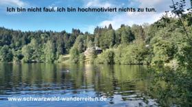 Foto 15 Geschenkidee für Reiter, Wanderreiter, Freizeitreiter - Wanderitt ab Todtmoos Au