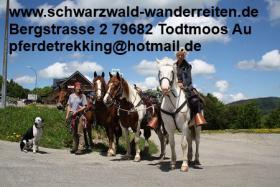 Foto 27 Geschenkidee für Reiter, Wanderreiter, Freizeitreiter - Wanderitt ab Todtmoos Au