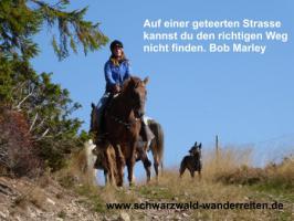 Foto 32 Geschenkidee für Reiter, Wanderreiter, Freizeitreiter - Wanderitt ab Todtmoos Au